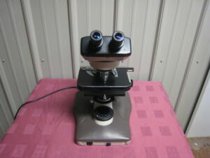 NIKON Labophot-2 for Basic Clinical Microscope for sale