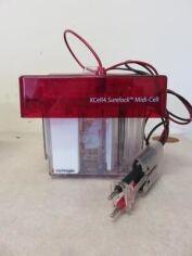 INVITROGEN XCell4 Surelock Midi-Cell Electrophoresis Unit for sale