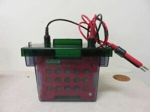 BIO-RAD Criterion Bter Electrophoresis Unit for sale