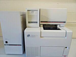 BECKMAN P/ACE MDQ Electrophoresis Unit for sale